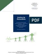 Scaling Up Renewables Executive Summary 2011