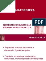 Hematopoieza 2009_new (1)