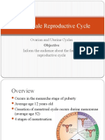 The Female Reproductive Cycle