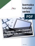 Tutorial Dynamic Multi Channel Websites