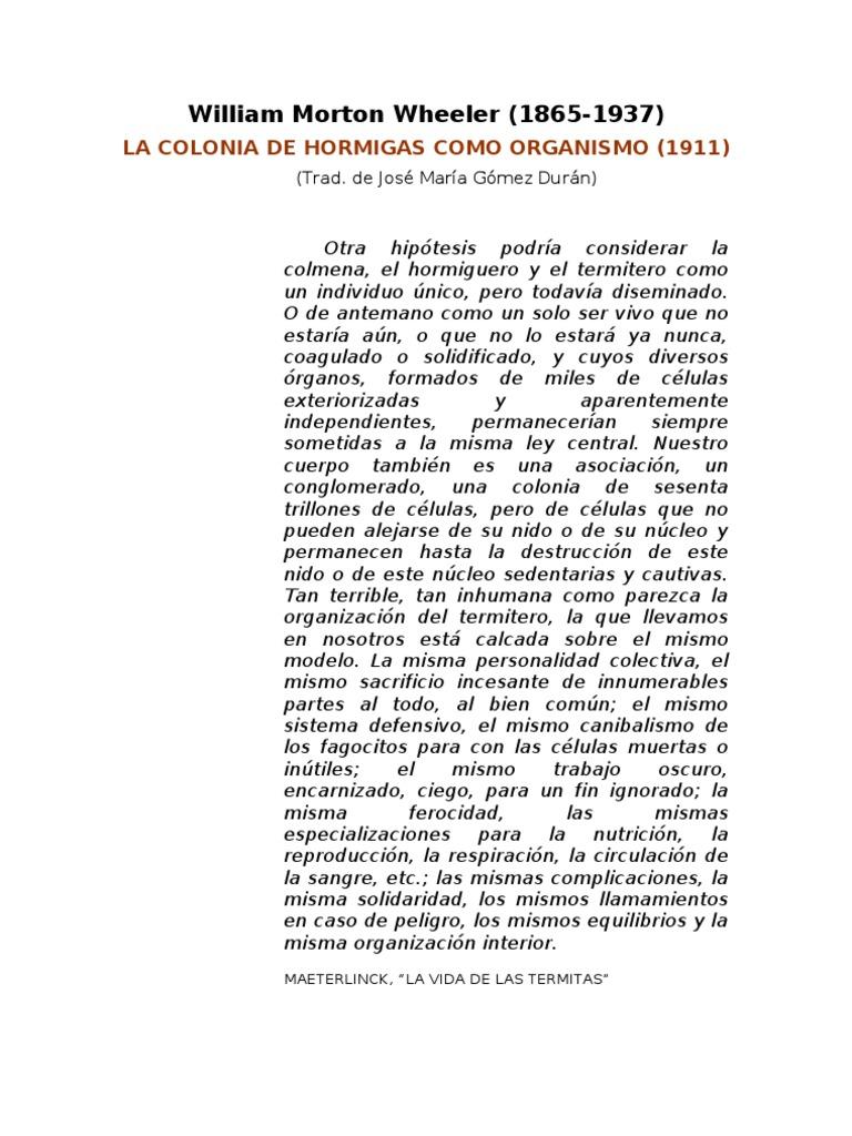 William Morton Wheeler La Colonia De Hormigas Como Organismo