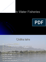 Brackish Water Fisheries