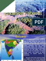 DAN Inland Estuarine