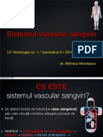 LP Sem 2 1 Vascular