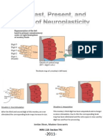 The Past, Present and Future of Neuroplasticity