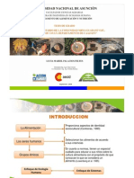 ppt Perfil Alimentario Mbya.Lucía Palacios