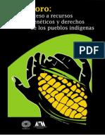Foro Acceso Recursos Geneticos UAMX 2001