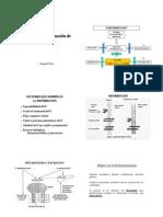 Distribución y Eliminación I-IP