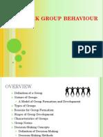 Work Group Behaviour