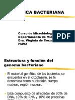 GENETICbac