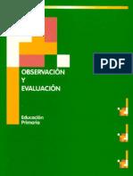 observacion y evaluacion