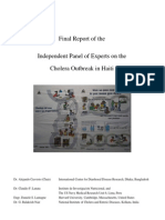 UN Cholera Report Final