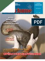 l ENCLUME Magazine 1