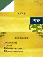 13 Aines