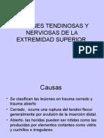 CLASE 9 Les Tend y Nerv de EESS Ppt Share)