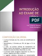 aula 2- INTRODUÇÃO AO EXAME DE URINA