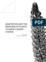 Adaptation and the response of plants to rapid climate change