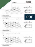 Accordi Fisarmonica