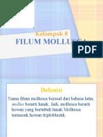 Presentasi Mollusca