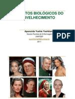 Fisiologia Do Envelhecimento 2011
