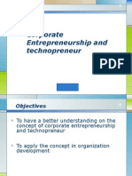 Corporate Entrepreneur