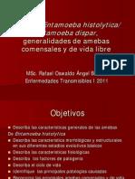 Amebas Entamoeba Histolytica