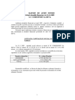 Raport de Audit Intern Comelf 2009