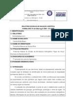 modelo de relatorio de bolsa de iniciação cientifica