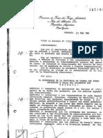 Decreto Provincial Nº 393/96