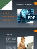 Trabajo_de_psicopatologiaULTIMAAAAA