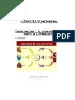 Sintésis y Metabolismos (Carbohidratos, Lípido y Proteínas). Prof Joselyn Pelayo