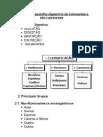 Anatomia do aparelho digestório de ruminantes e não ruminantes