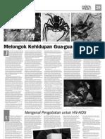 Fauna Gua Jawa Barat