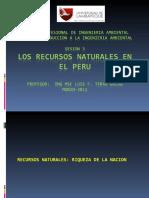 3 RRNN EN EL PERU