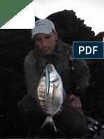 Catture Con Artificiali Seaspin Buginu