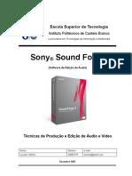 soundforge relatorio