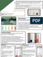 Summary Sheet- Food Tests
