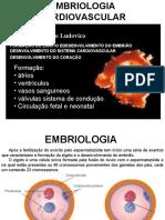 Embriologia Cardio Vascular