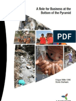 Ashridge Research Bottom of Pyramid FULL REPORT