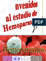 hemoparasitos