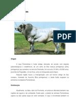 Romulo Piemontesa