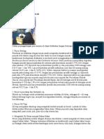 Penanggulangan limbah oli