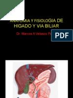 Anatomia y Fisiologia de Higado y via Biliar