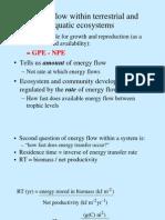 Flujo de Energia Amb Terres y Acuatic