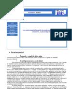 Proiect 11CEEX-I03-06 10 2005 Pe Macheta