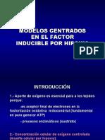 MODELOS HIF modificado 2007-08