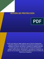 La Accion de Proteccon