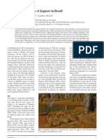 Astete Et Al 2008 Jaguar Ecology in Brazil s