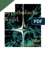 Radlberger - Der Hyperbolische Kegel Nach Walter Schauberger (2002)