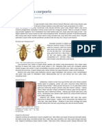 LTM pediculosis corporis
